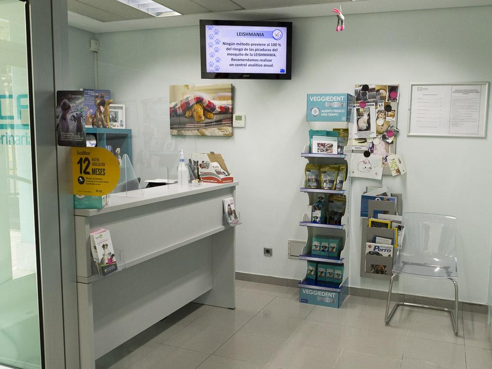 mostrador clinica veterinaria loranca instalaciones fuenlabrada